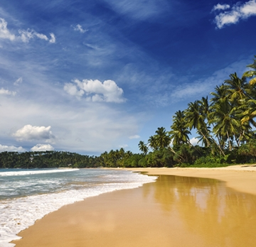 Sri Lanka in 8 Days - Enjoy the culture and food